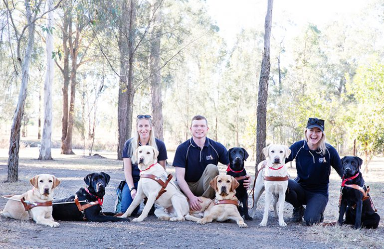Graduating Guide Dogs presented with their first harness in Port Macquarie