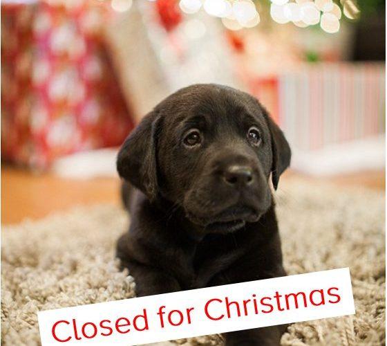 Christmas Closedown