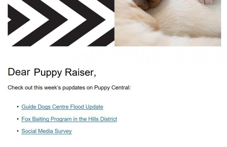 Puppy Central updates