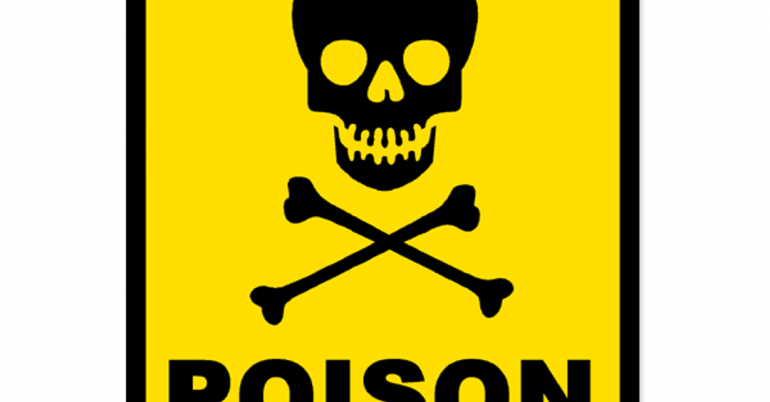 Protecting pups from poisons & toxins