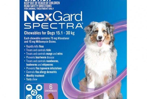 NexGard News