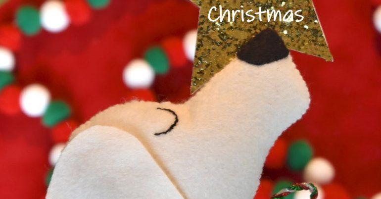 Temporary Care @ Christmas
